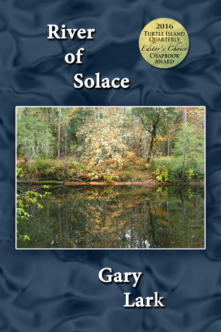 River of Solace cover