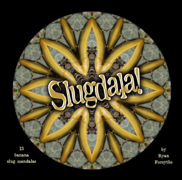 Slugdala! cover