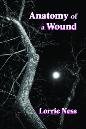 Anatomy of a Wound cover